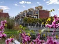 上海臻水岸苑