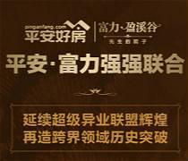 """平安VIP专场:海南富力盈溪谷""""先生的院子""""艺术节"""